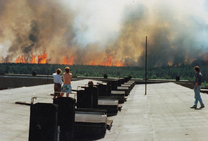 Weißwasser 1992. Waldbrände bedrohen die Stadt.
