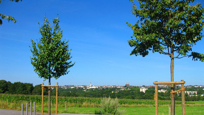 Solingen-Stadtpanorama