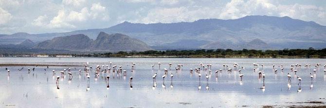 Lago Elmenteita