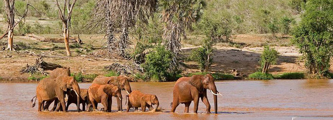 Galana River - Tsavo East