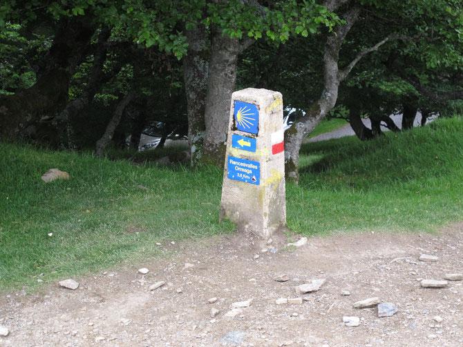 Camino Frances ist sehr gut gekennzeichnet mit Jakobsmuschel oder gelbem Pfail.
