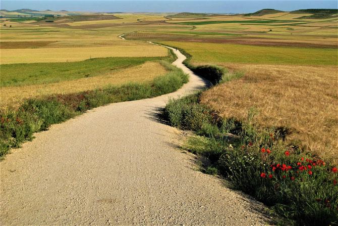 Der Weg ist das Ziel