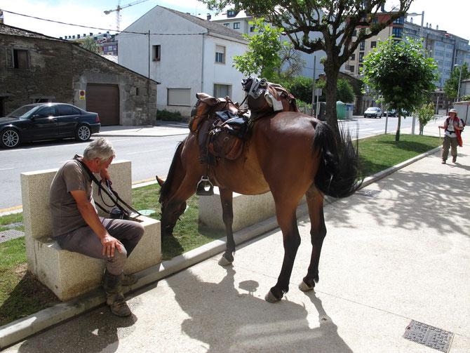 Es gibt auch Pilgern zur Pferd. Die sind nicht wesentlich schneller als wir zu Fuß.