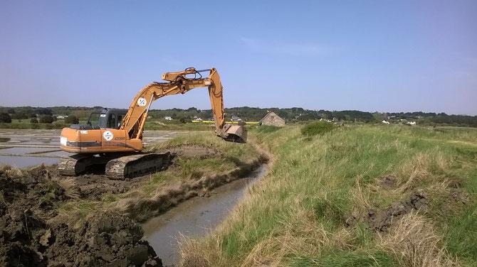 cobier   beaucoup de terre accumuler depuis des centaine d'années