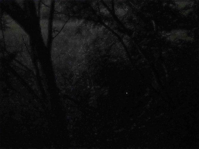 6月8日19:50 撮影者 青柳象平さん 場所はいつもの所です