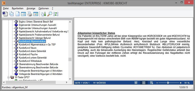 Befunderstellung texManager