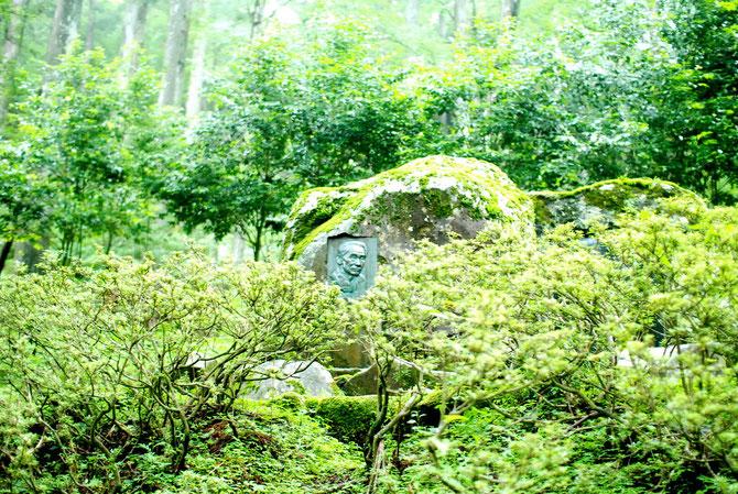 天城峠(あまぎとうげ)は、静岡県伊豆市と賀茂郡河津町の境にある峠。 古来よりあった峠ではなく、1904年(明治37年)に完成した天城トンネルによってできた峠である。トンネルの標高は710m前後で、直上の山稜の標高は830mほどである。このトンネル直上の山稜にある登山道には天城峠の分岐点があるが、山を下る道があるわけではない。 天城峠は伊豆半島の内陸と南部を結ぶ重要な峠であり、このトンネルのできる前の天城越えは下田街道の難所であった。