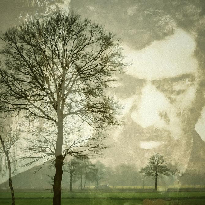 Gustav, aus der Serie Dream, Canvas 60 x 60 cm