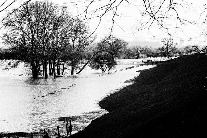 Hochwasser am Niederrhein, fine art print, gerahmt