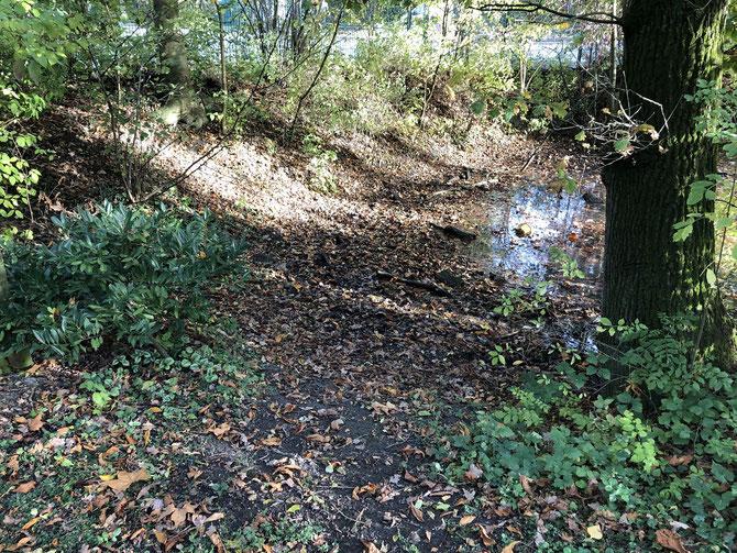 ... noch heute sind die Umrisse des Bombentrichters am Wasserlehrpfad in Osterwick - nahe dem Kreisverkehr - zu erkennen.