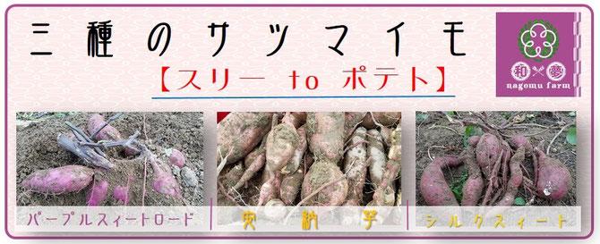 三種のサツマイモ【スリーtoポテト】   和×夢 nagomu farm