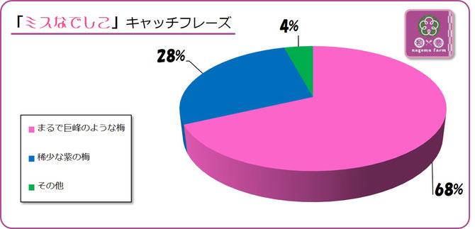 大阪樟蔭学祭アンケート【2015B】ミスなでしこキャッチフレーズは? 集計グラフ
