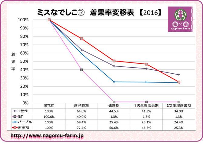 ミスなでしこⓇ2016着果率推移表 和×夢 nagomu farm