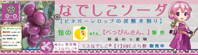 出店店舗看板2016 和×夢 nagomu farm