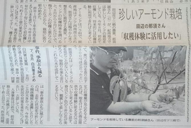 珍しいアーモンド栽培 田辺の那須さん「収穫体験に活用したい」