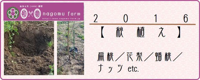 秋植え【2016】レポート   和×夢 nagomu farm