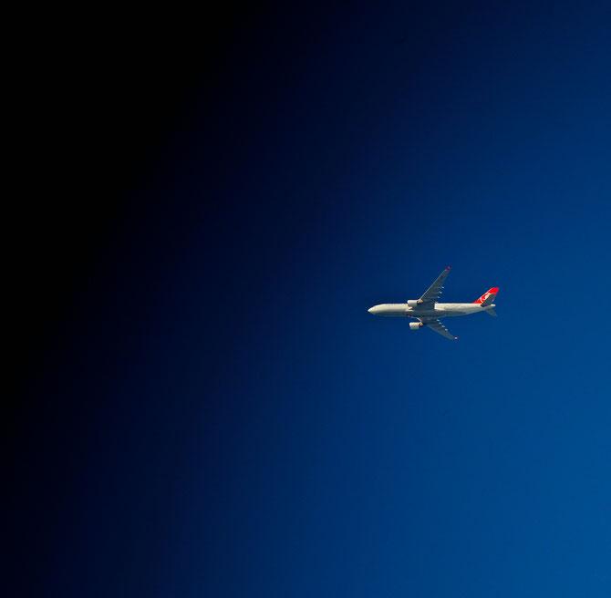 """ Plane "" Photograph 2017"