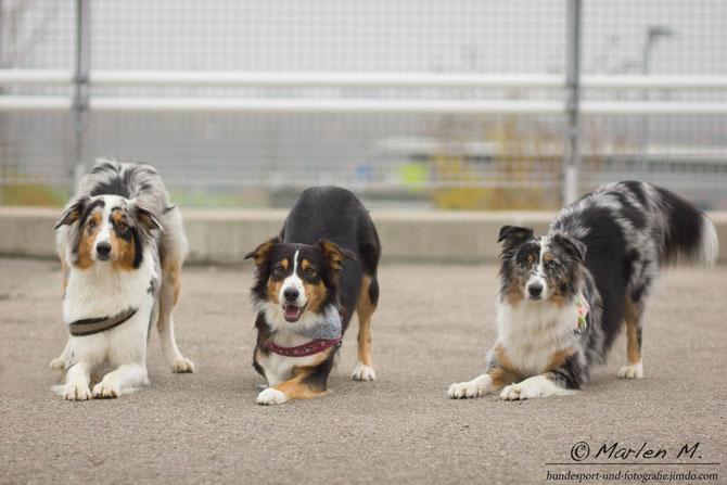 Lissy, Amy & Enya