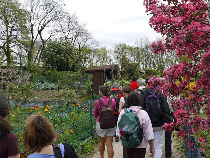 sur les pas de Chateaubriand à Chatenay-Malabry le 6 avril 2014