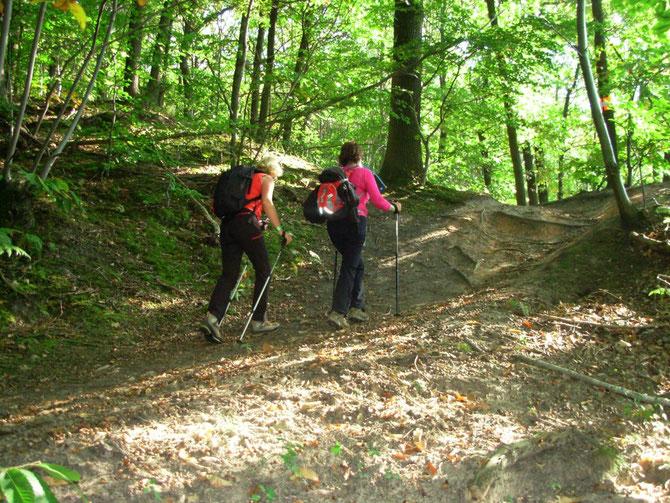 BOSSAPAS samedi 24 septembre 2011 la randonnée sportive des Hauts-de-Seine