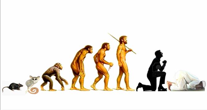 Evolutionnisme