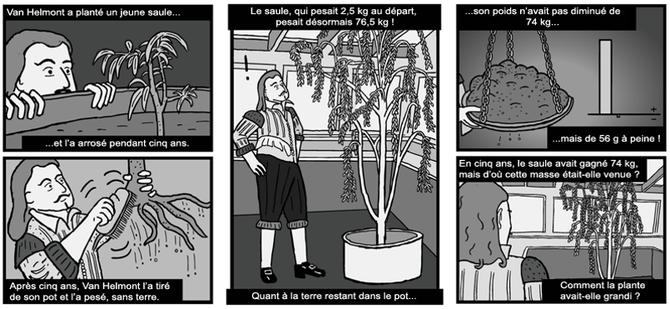 Expérience historique de Van Helmont sur la création de matière par les végétaux. Source : http://www.stuartmcmillen.com/comics_en/thin-air/#page-1