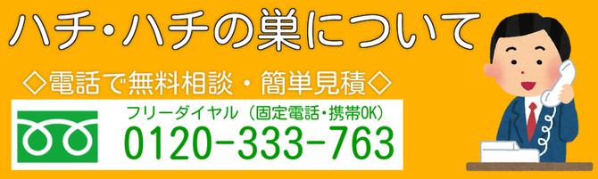 金沢市 蜂の巣駆除