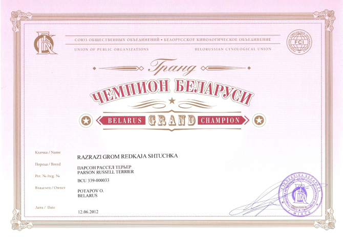 Гранд Чемпион Беларуси