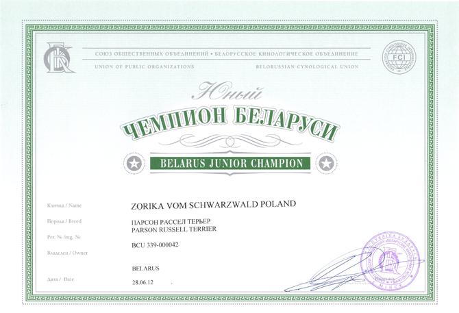 Юный Чемпион Беларуси