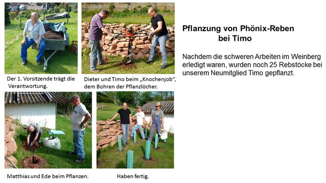 Fotos Berichte Sanktvinzenzheiligenwalds Webseite