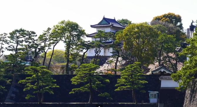PRINTEMPS AU PALAIS IMPERIAL DE TOKYO.