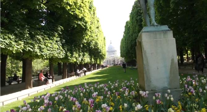 PRINTEMPS AU JARDIN DU LUXEMBOURG. PARIS VIè.