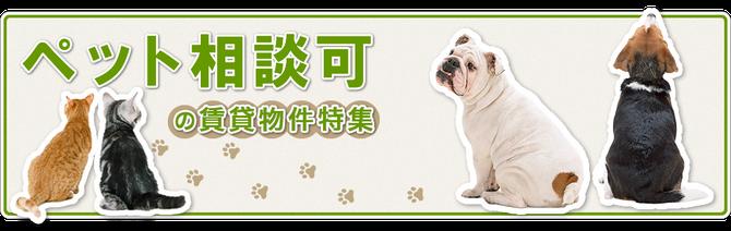 ※「ヴィンテージアベニュー・喜多川」はペットと安心して暮せる一戸建賃貸(犬猫共)です!