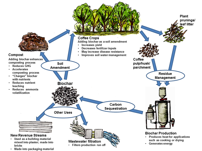 Biochar in coffee production. Source: Thayer Tomlinson, 2015