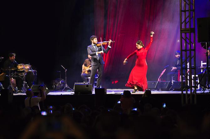 paco montalvo, violin, conciertos, flamenco,baile, bailaora