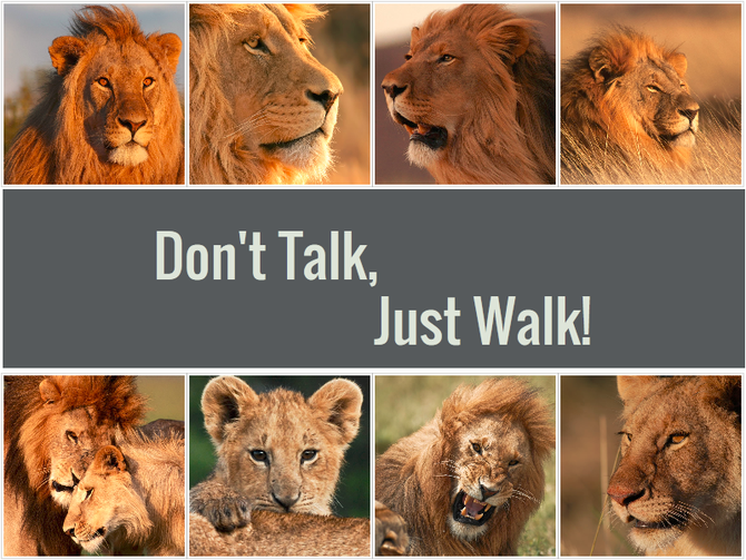 Don't talk, just walk!