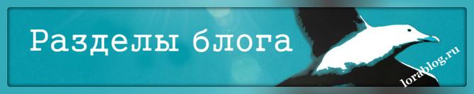Разделы блога