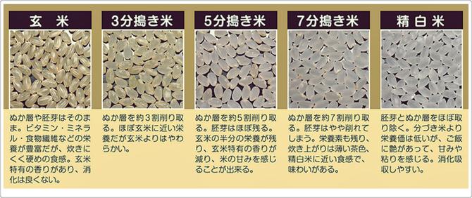 日本米穀小売商業組合連合会お米マイスターネットワーク作成