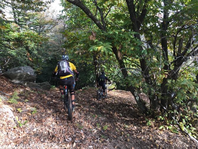 Poi si entra nel bosco, il sentiero è coperto dalle foglia, l'aiuto del gps è stato fondamentale