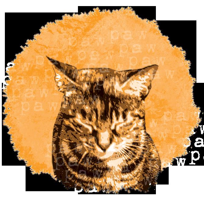 Balearen, katzen, miau, Katzenliebhaber, Katze, cool, Katzenfreund, retro, weiches kätzchen, Mietze, tiger, Katzen, Kätzchen, haustier, tierschutz, vintage, tierliebe, illustration, schnurren, zeichnung