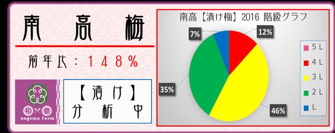 漬け梅2016【データ分析】  和×夢 nagomu farm
