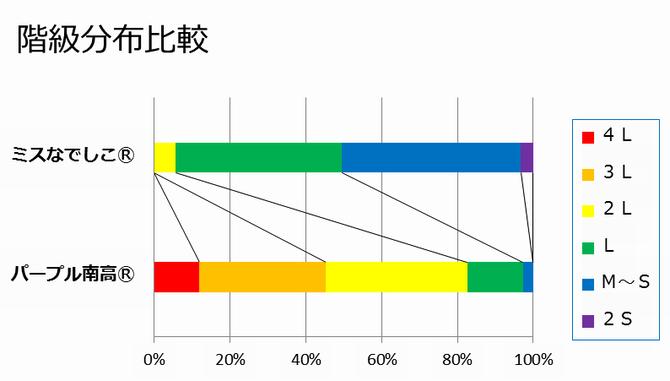 ライバル階級分布比較