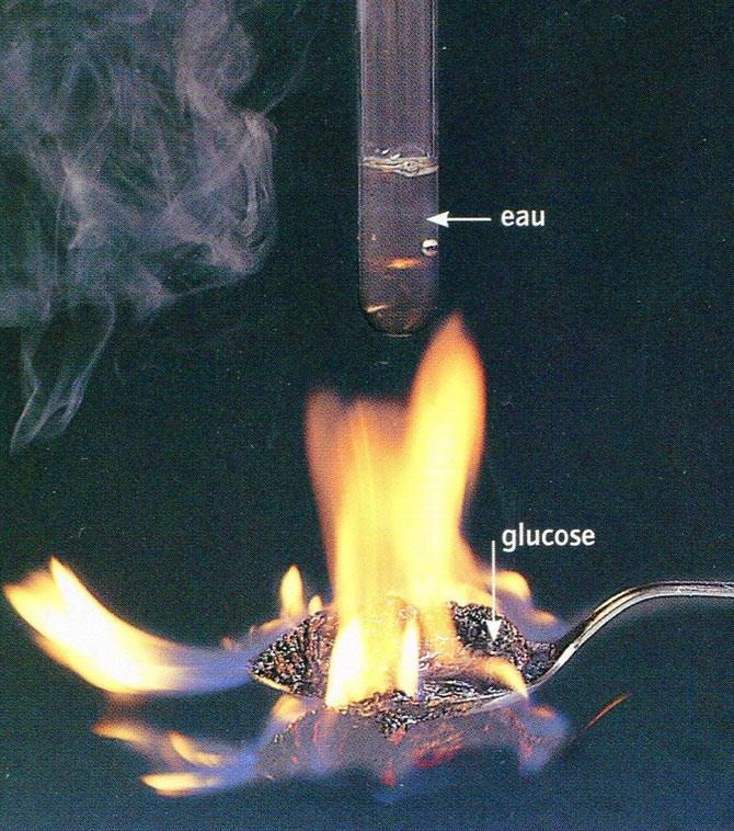 Expérience de combustion du glucose en présence de dioxygène. SVT Belin, 2009 p57.