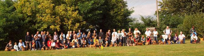 Australian Terrier Treffen 2012