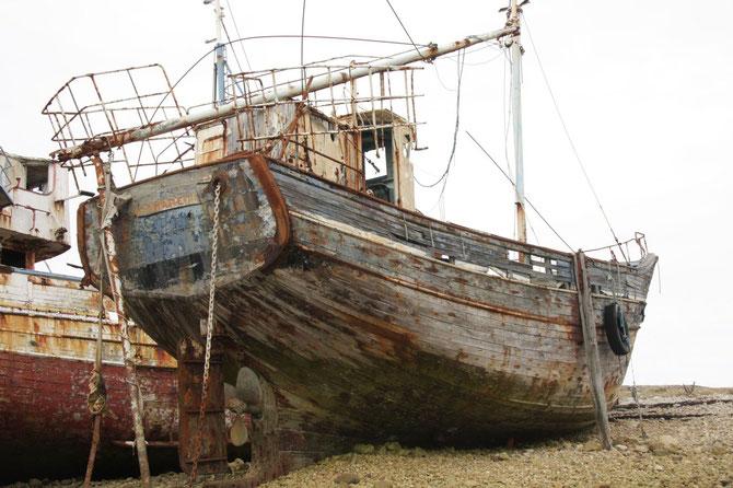 Camaret sur Mer, Crozon, Bretagne 08.09.2013