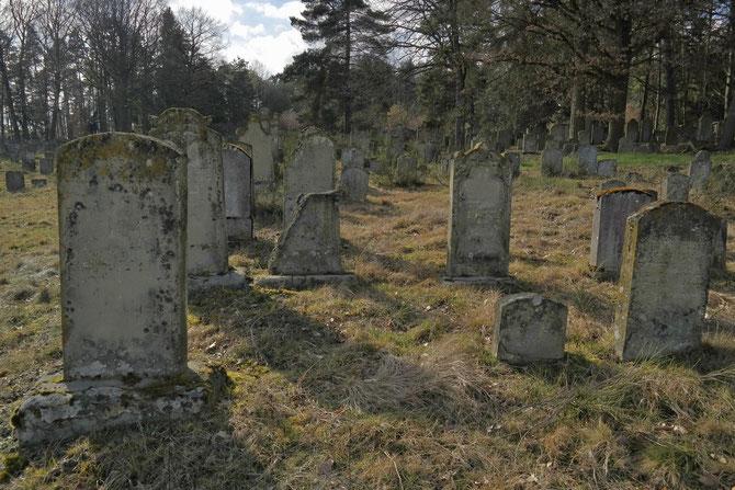 Jüdischer Friedhof Bechhofen, 2.300 Grabsteine, 1270  gegründet, Foto 28.02.2014