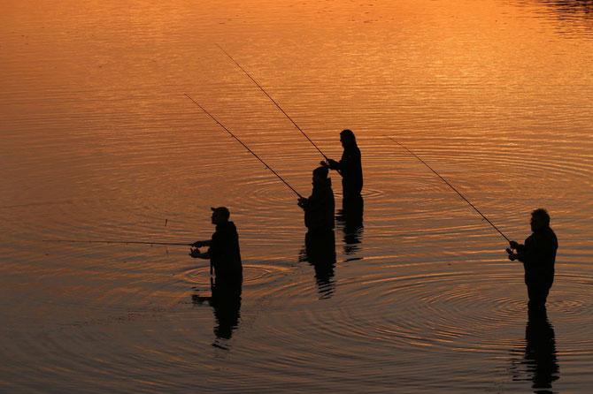 Abendstimmung am Rothsee am 02.11.2014 um 17:48 (Zanderfischen)