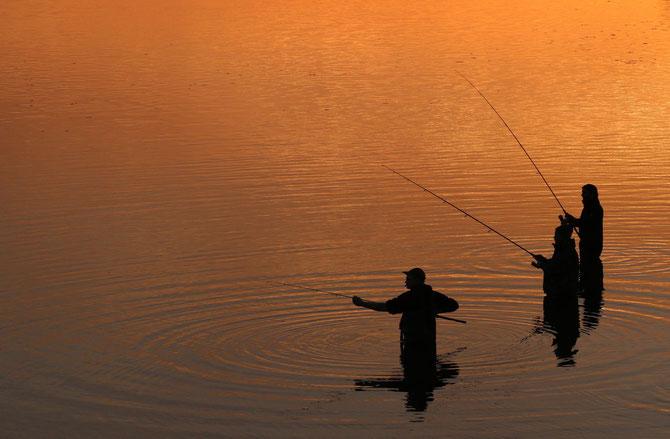 Zanderfischen am Rothsee am 02.11.2014 um 17:48