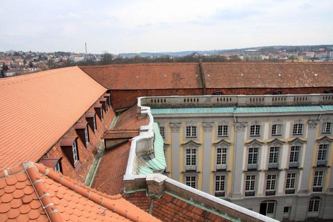 Dachlandschaft Schloss