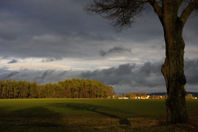 Das Gewitter wirft seine Schatten voraus, 21.03.2008